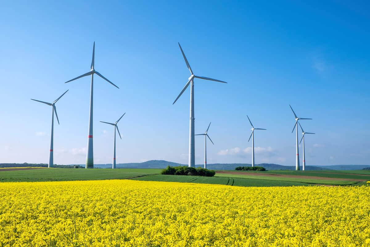 Wind Farms as Source of Energy